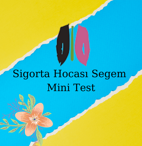 Sigorta Hocası Segem Mini Test
