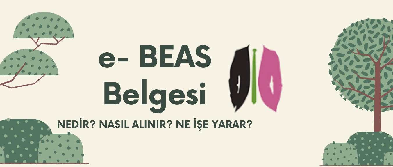 BES / e- BEAS Belgesi